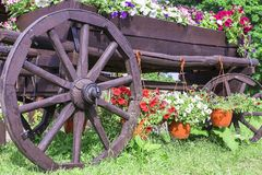 Wooden cart with summer flowers Royalty Free Stock Photography