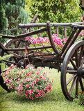 Wooden cart with summer flowers, detail scene Stock Images