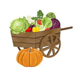 Wooden cart with vegetables. Illustration of a vintage wooden Cart Filled With Freshly Picked Vegetables. Vector illustration EPS 10 Stock Photography
