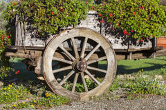 Wooden cart wagon decorated with summer flowers in Royalty Free Stock Photos