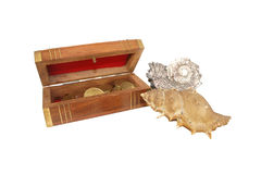 Wooden casket with coins and seashells on white background Stock Photos