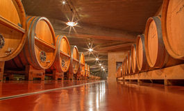 Wooden casks in modern wine cellar Royalty Free Stock Photo