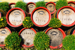 Wooden casks stacked outdoors at Oktoberfest at sunny day: Erfur Royalty Free Stock Photos