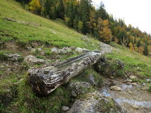 Wooden cattle trough at alp Royalty Free Stock Images