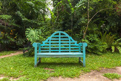 lonely wooden chair in beautiful park. beautiful garden stock
