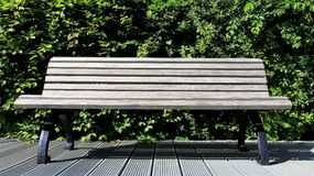 Wooden chair with green fence Stock Photography