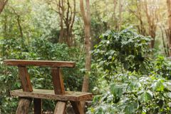 Wooden chair is left in the garden. stock images
