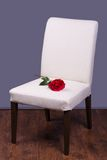 Wooden chair with rose Royalty Free Stock Photos