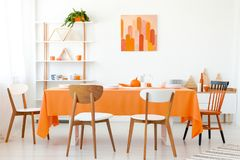 Wooden chairs at orange table in white dining room. Interior with poster and plant. Real photo stock photography