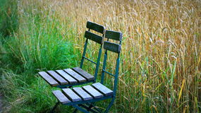 Wooden chairs standing in a field Stock Photos