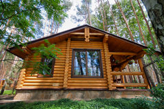 Wooden chalet. In pine forest royalty free stock images