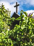 Wooden chapel hidden in the leaves of a tree stock images