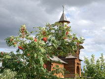 A wooden chapel with rowanberry tree in Kolomenskoye in Moscow Royalty Free Stock Photos