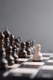 Wooden chess Stock Photos