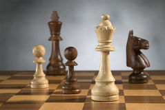 Wooden chess game pieces Royalty Free Stock Photos