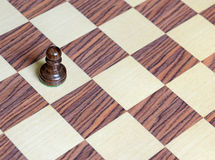 Wooden Chess pieces on Chessboard. Wooden Chess pieces on wooden rosewood Chessboard Stock Photo