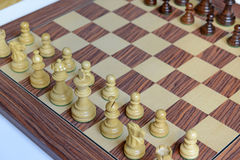 Wooden Chess pieces on Chessboard. Wooden Chess pieces on wooden rosewood Chessboard Stock Images