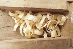 Wooden chips Royalty Free Stock Image