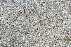 Wooden chips, bark mulch Stock Photography