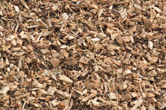 Wooden chips for green energy in the Netherlands Stock Photography