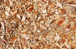 Wooden chips layer Stock Image