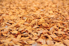 Wooden chips texture Stock Images