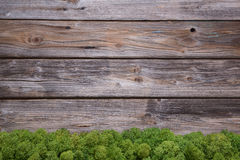 Wooden christmas background with moss for an old rustic frame. royalty free stock photos
