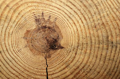 Wooden circle with a split cut Royalty Free Stock Image