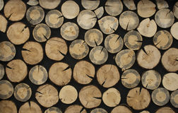 Wooden circles on a black background Stock Image