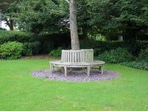 Free Wooden Circular Bench Around Tree Stock Photo - 98711320
