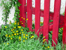 Wooden closed house gate on countryside. Wooden red closed house gate on countryside Royalty Free Stock Photography
