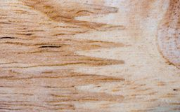The wooden. Closeup floor background and texture Royalty Free Stock Photography