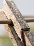 Wooden clothes peg old and aged Royalty Free Stock Photography