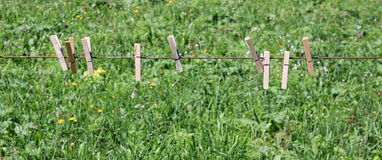 Wooden clothes pegs on a line. Wooden clothes pegs on a line in the garden with grass at the background Royalty Free Stock Photos