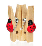 Wooden clothespin Royalty Free Stock Photos