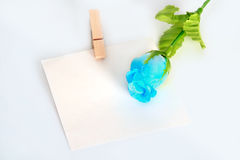 Wooden clothespin. Wooden clothespin and blank paper, rose on the table Stock Photo