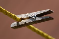 A Wooden Clothespin Clipped to the Clothesline stock photography