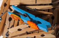 Wooden clothespins. Group of wooden clothespins which projects one blue Royalty Free Stock Photos