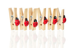 Wooden clothespins Royalty Free Stock Photos