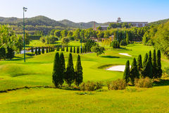 Wooden club island golf course Stock Images