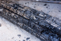 Wooden coal. How wooden stick burn in fire Stock Image