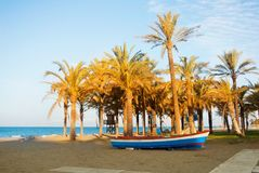 Wooden colorful boat standing on the sandy bay beach near the high palm trees with blue sea water at the background in warm evenin Royalty Free Stock Photography