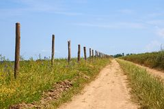 Wooden columns near the dirt rural road Stock Image