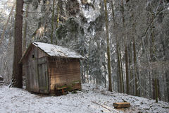 Wooden cottage for hay for feeding of wild animals in snowy fore Royalty Free Stock Photography