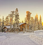 Wooden cottage house at winter Lapland Royalty Free Stock Photo