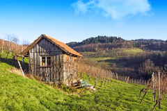 Wooden cottage hut in vineyards Royalty Free Stock Image
