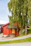 Wooden cottage and tree. In Norway Stock Photography