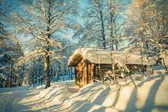 Wooden cottage in winter forest with frost and snow in sunny day Stock Image