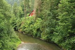 Cottages in Slovak Paradise. Wooden cottages behind bushes, trees and river Hornad on meadow in forest in Slovak national park Slovak Paradise in Slovak Republic stock images