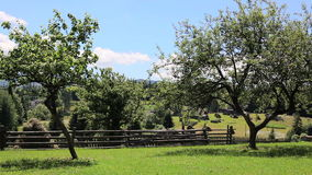 Wooden country house, green lawn and blue sky stock video footage